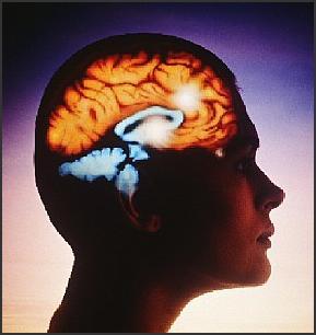 remedios caseros para la epilepsia
