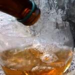 remedio casero cerveza insecto
